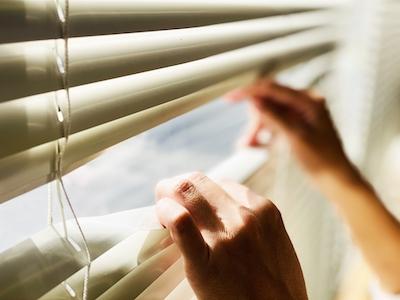 窓からのぞく